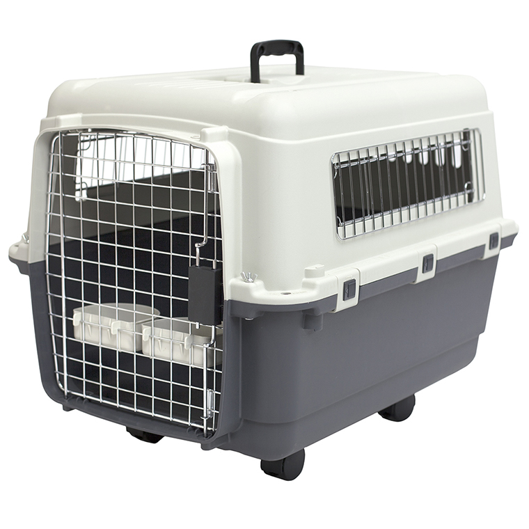 Medium Airline Plastic Kennel